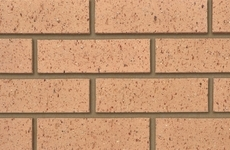 Ibstock Earlswood Textured Buff 65mm Dragfaced Bricks