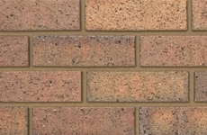 Ibstock Lansdown Multi Gold 65mm Dragfaced Bricks